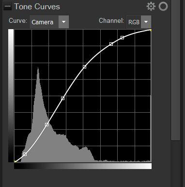 Camera Tone Curve